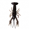 приманки SG LB 3D Crayfish 8 4g F 4pcs Black Brown 47103